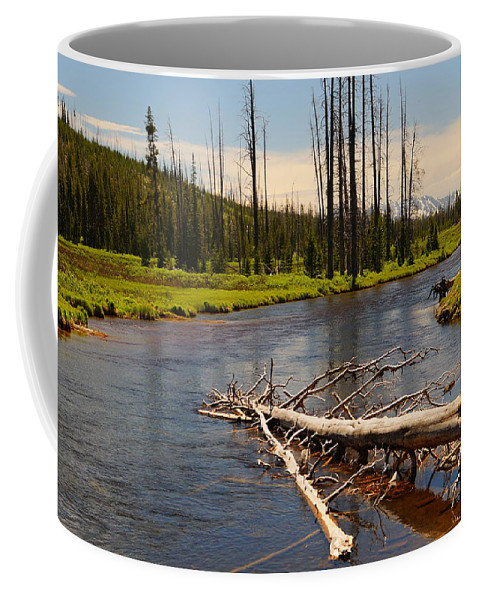 Lewis River Coffee Mug featuring the photograph Lewis River by Beth Collins
