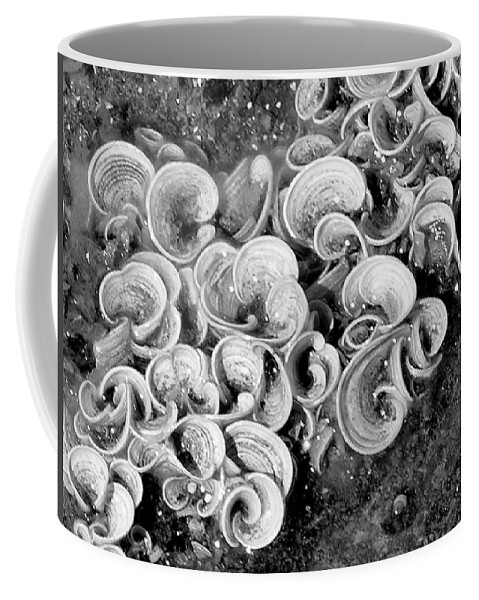 Mary Deal Coffee Mug featuring the photograph Life On The Rocks In Black And White by Mary Deal