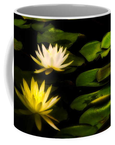 Flower Coffee Mug featuring the photograph Light In The Darkness by Ches Black