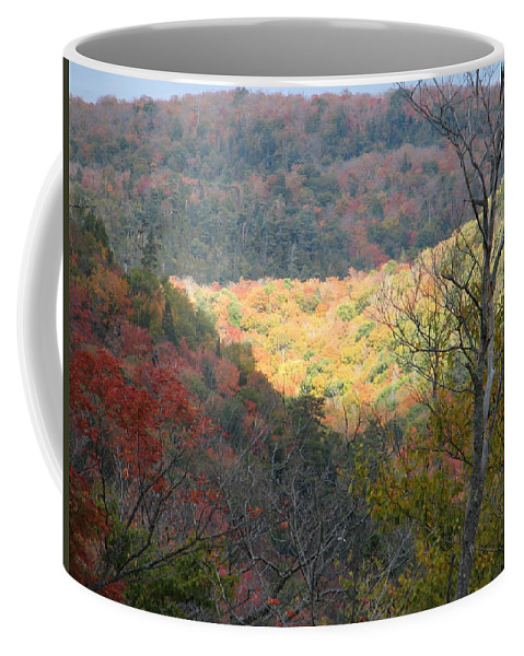 Fall Coffee Mug featuring the photograph Light On The Valley by Kelly Mezzapelle