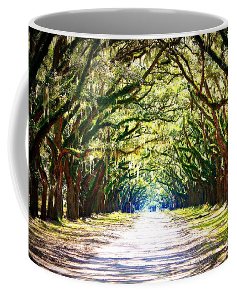 Landscape Coffee Mug featuring the photograph Light Through Live Oak Lane by Carol Groenen