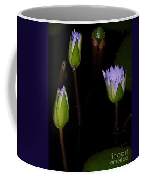 Purple Coffee Mug featuring the painting Light Violet Lilies by Eric Schiabor