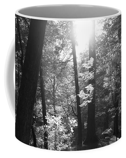 Coffee Mug featuring the photograph Lighting by Krysti Willson