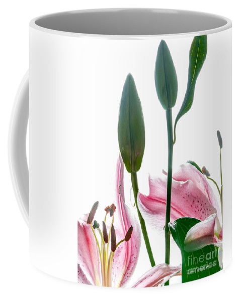 Lilies Coffee Mug featuring the photograph Pink Oriental Starfire Lilies by David Perry Lawrence