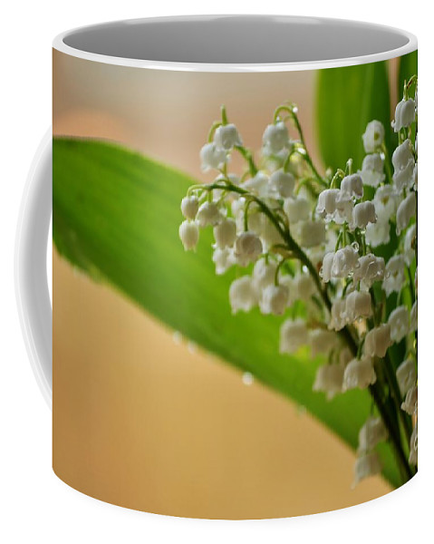 Lily Of The Valley Coffee Mug featuring the photograph Lilies Of The Valley 1 by Malgorzata Wryk-Igras