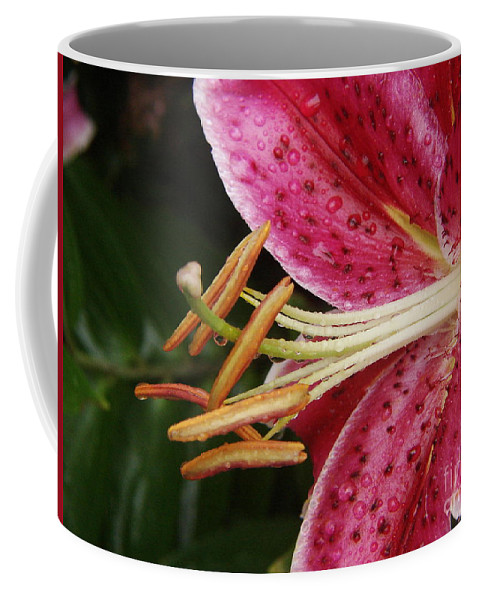 Fancy Coffee Mug featuring the photograph Lillith by Priscilla Richardson
