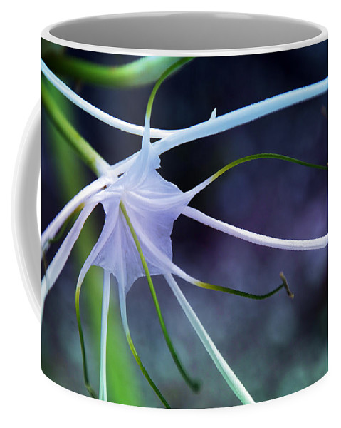 Flower Coffee Mug featuring the photograph Lilly Flower Purple by Susanne Van Hulst