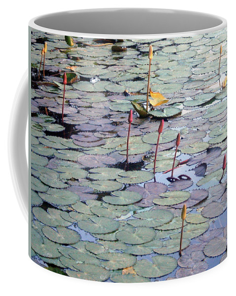 Lilly Pond Coffee Mug featuring the photograph Lilly Pond by Nila D