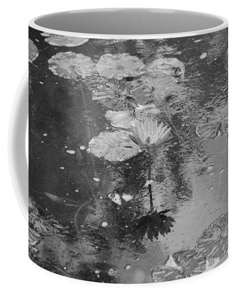 Lilly Pond Coffee Mug featuring the photograph Lilly Pond by Rob Hans