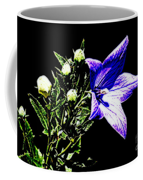 Lily Coffee Mug featuring the photograph Lily by Anita Goel