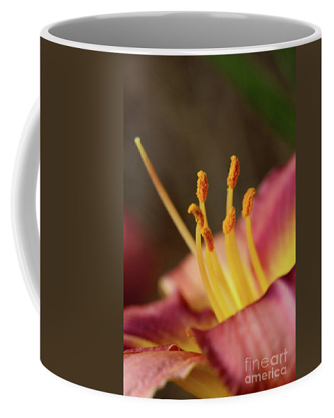 Arrangement Coffee Mug featuring the photograph Lily Bloom by Alan Look