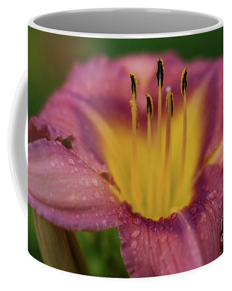 Arrangement Coffee Mug featuring the photograph Lily Bloom Close Up by Alan Look