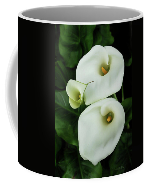 Calla Lily Coffee Mug featuring the photograph Lily Family by Donna Blackhall