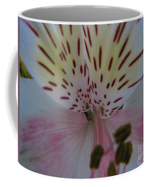 Patzer Coffee Mug featuring the photograph Lily by Greg Patzer