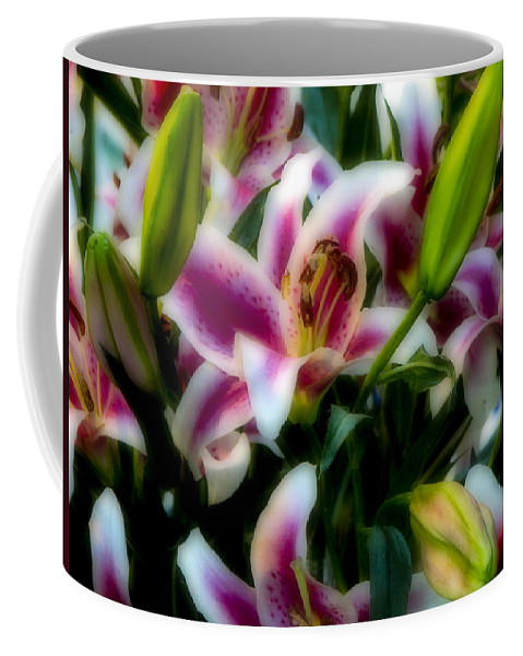 Flower Coffee Mug featuring the photograph Lily Of The Field by Ches Black