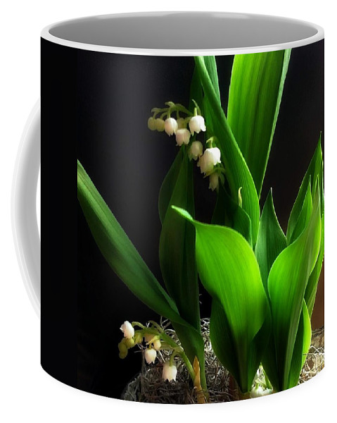 Lily Coffee Mug featuring the photograph Lily Of The Valley by Katie Wing Vigil