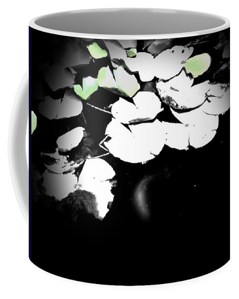 Water Coffee Mug featuring the photograph Lily Pad by Charleen Treasures