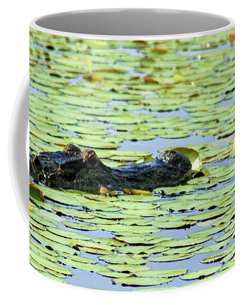 Photo For Sale Coffee Mug featuring the photograph Lily Pad Gator by Robert Wilder Jr