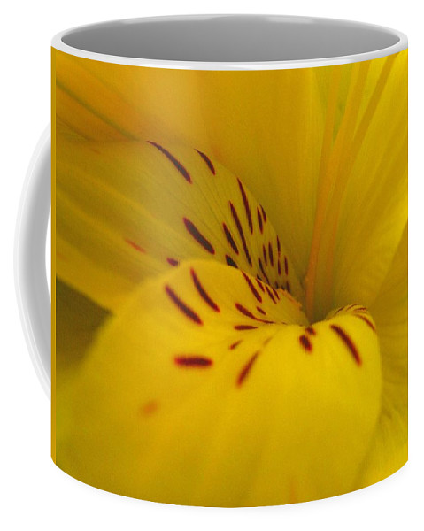 Yellow Coffee Mug featuring the photograph Lily by Rhonda Barrett