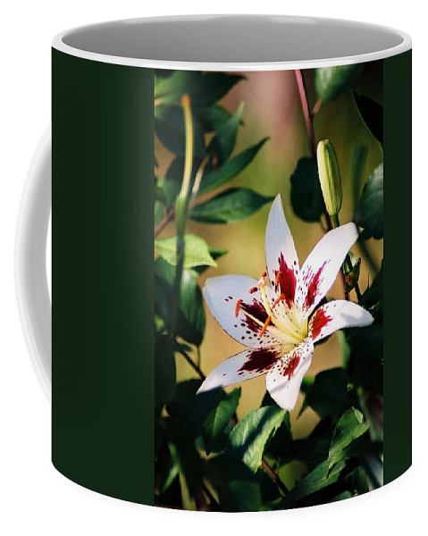 Flower Coffee Mug featuring the photograph Lily by Steve Karol