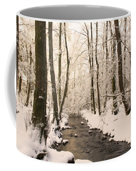 Nature Coffee Mug featuring the photograph Limentra In Winter by Mirko Chianucci