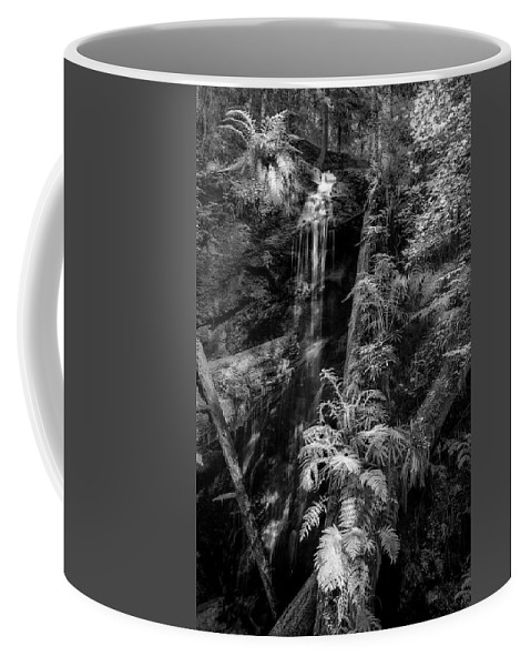 Art Coffee Mug featuring the photograph Limited And Restricted by Jon Glaser