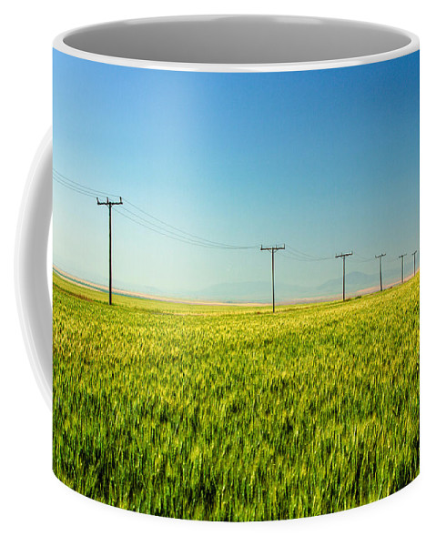 Green Coffee Mug featuring the photograph Lining A Sea Of Green by Todd Klassy