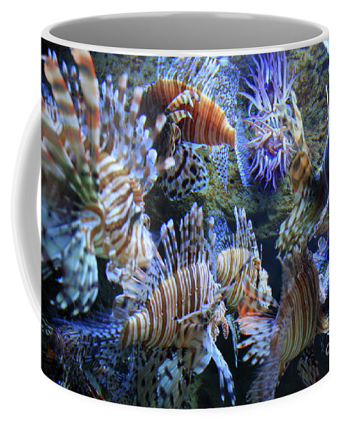 Lion Fish Coffee Mug featuring the photograph Lion Fish by Carol Groenen