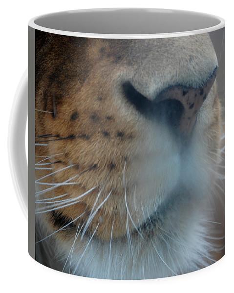 Lion Coffee Mug featuring the photograph Lion's Breath by Lisa Kane