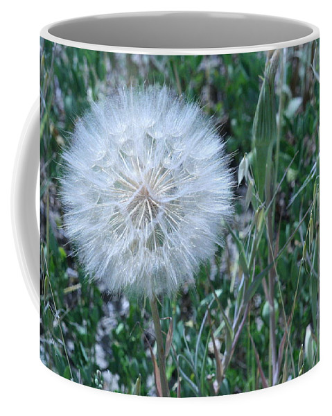 Floral Coffee Mug featuring the photograph Lion's Tooth by Mary Mikawoz