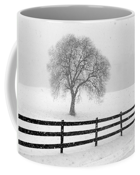 Snow Coffee Mug featuring the photograph Listen The Snow Is Falling All Around by J K York