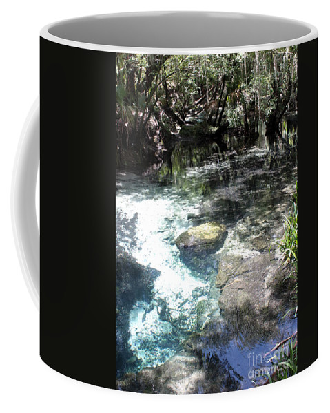 Lithia Springs Coffee Mug featuring the photograph Lithia Springs by Carol Groenen