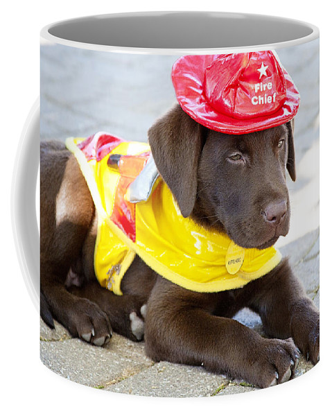 Dog Coffee Mug featuring the photograph Little Chief Lab Pup by Toni Hopper