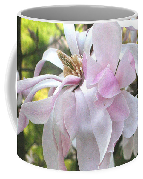 Flower Coffee Mug featuring the photograph Little English Flower by Sarah Madsen