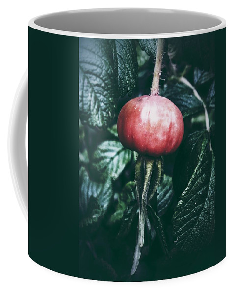 Nature Coffee Mug featuring the photograph Little Lady Rosehip by Karen Stahlros