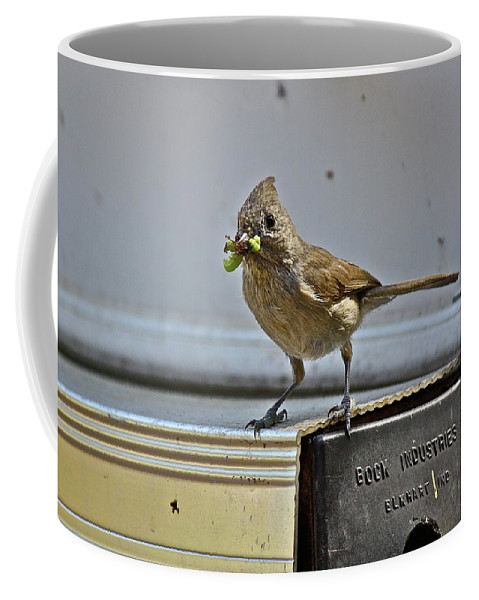 Birds Coffee Mug featuring the photograph Little Mother by Diana Hatcher