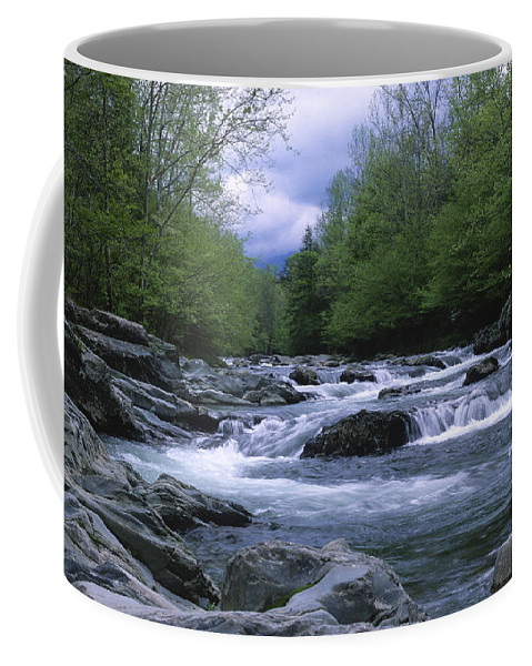 Great Smoky Mountains Coffee Mug featuring the photograph Little Pigeon River by Sandra Bronstein