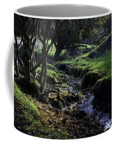Stream Coffee Mug featuring the photograph Little Stream by Kelly Jade King