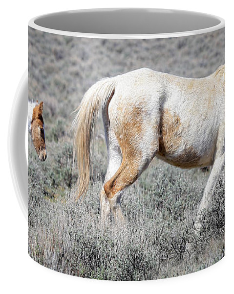 Horses Coffee Mug featuring the photograph Little Tail Gater by Athena Mckinzie