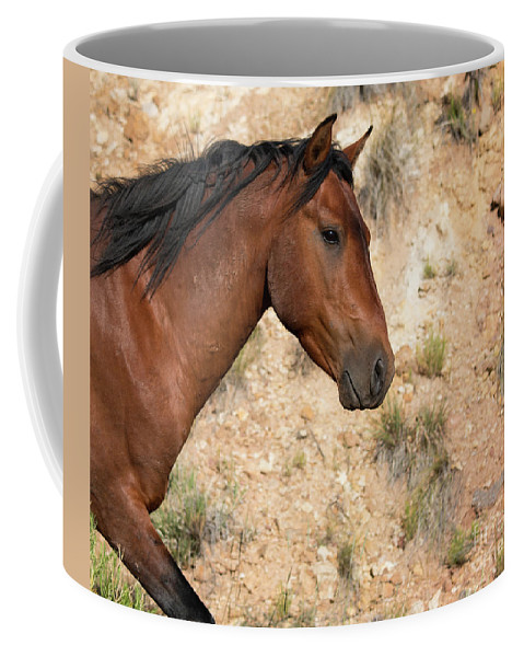 Wild Horse Coffee Mug featuring the photograph Living History by Sally E Wright