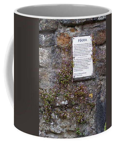 Irish Coffee Mug featuring the photograph Living Wall At Donegal Castle Ireland by Teresa Mucha