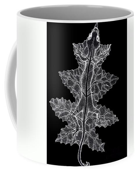 Lizard Art Coffee Mug featuring the drawing Lizard And Leaf by Nick Gustafson