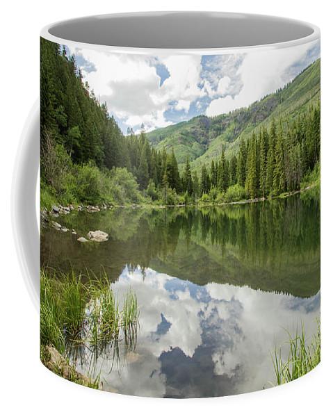 Colorado Coffee Mug featuring the photograph Lizard Lake Reflections by Debbie Rudd