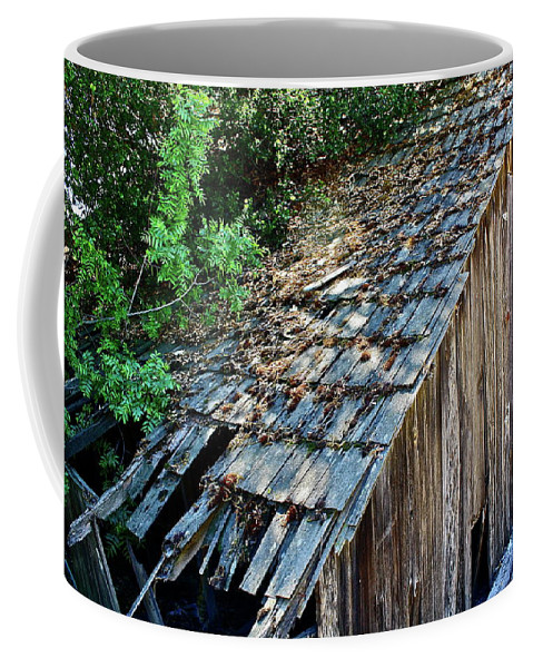 Barn Coffee Mug featuring the photograph Local Attraction by Diana Hatcher