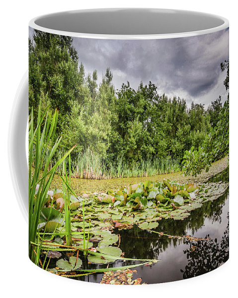 Northumberland Coffee Mug featuring the photograph Local Nature Reserve At East Cramlington by David Head