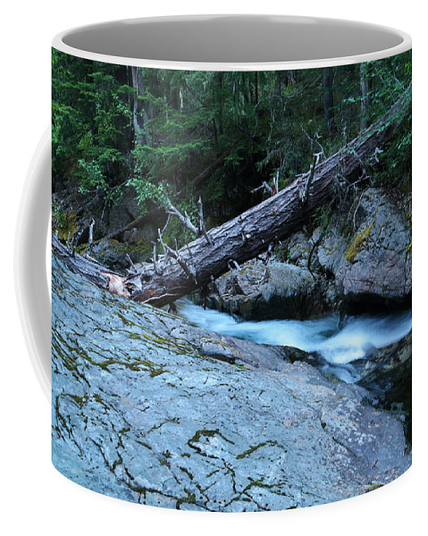 Water Coffee Mug featuring the photograph Log Over Deep Creek by Jeff Swan