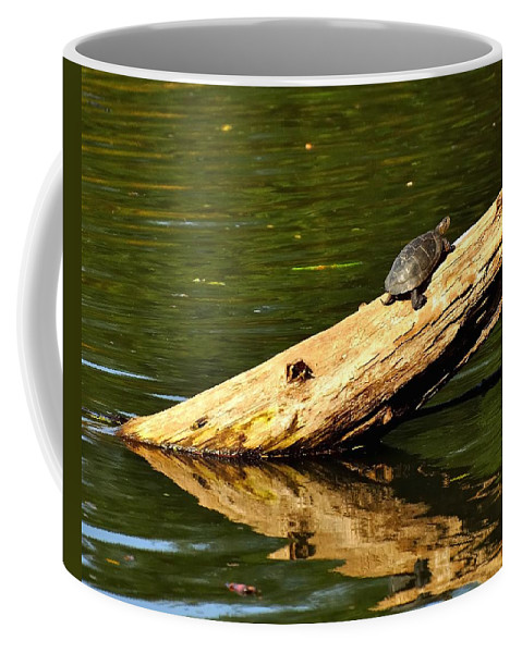 Oregon Coffee Mug featuring the photograph Log Turtle L 3584 by Jerry Sodorff