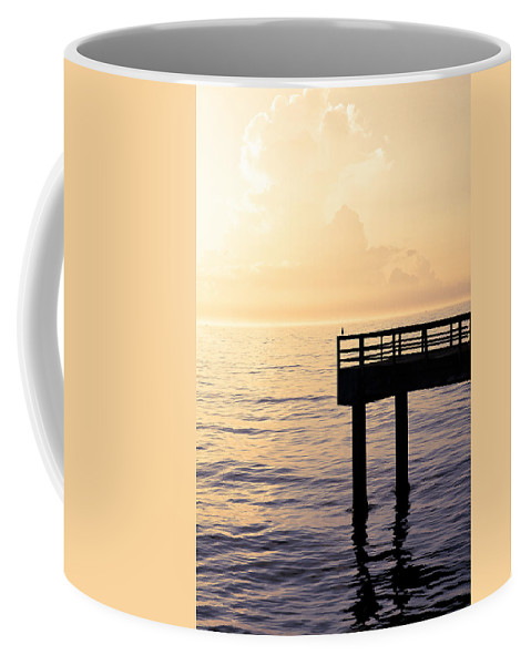 Beach Coffee Mug featuring the photograph Lone Bird At Morning by Marilyn Hunt