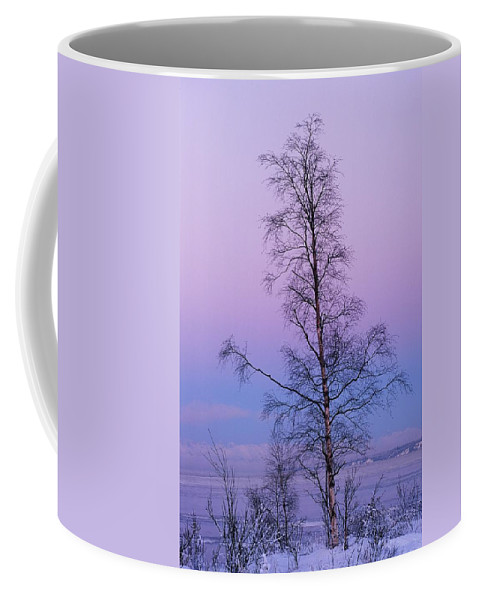 Tree Coffee Mug featuring the photograph Lone Tree At Winter Sunset by Ronnie Glover