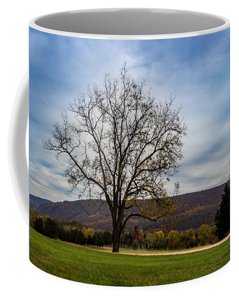 Bolivar Coffee Mug featuring the photograph Lone Tree by Ed Clark